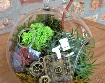 Steampunk Air Plant Terrarium - A Perfect Birthday or Fathers Day Gift