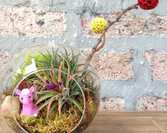 Childrens Horse and Air Plant Terrarium - A Perfect Birthday Gift