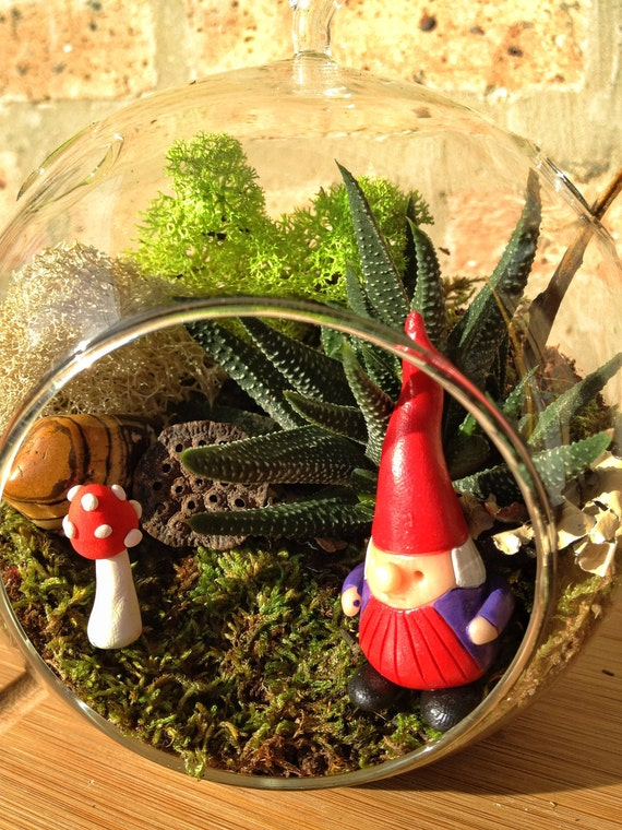 Gnome and Succulent Moss Terrarium  - a wonderful birthday idea DON'T FORGET to add a CHARM