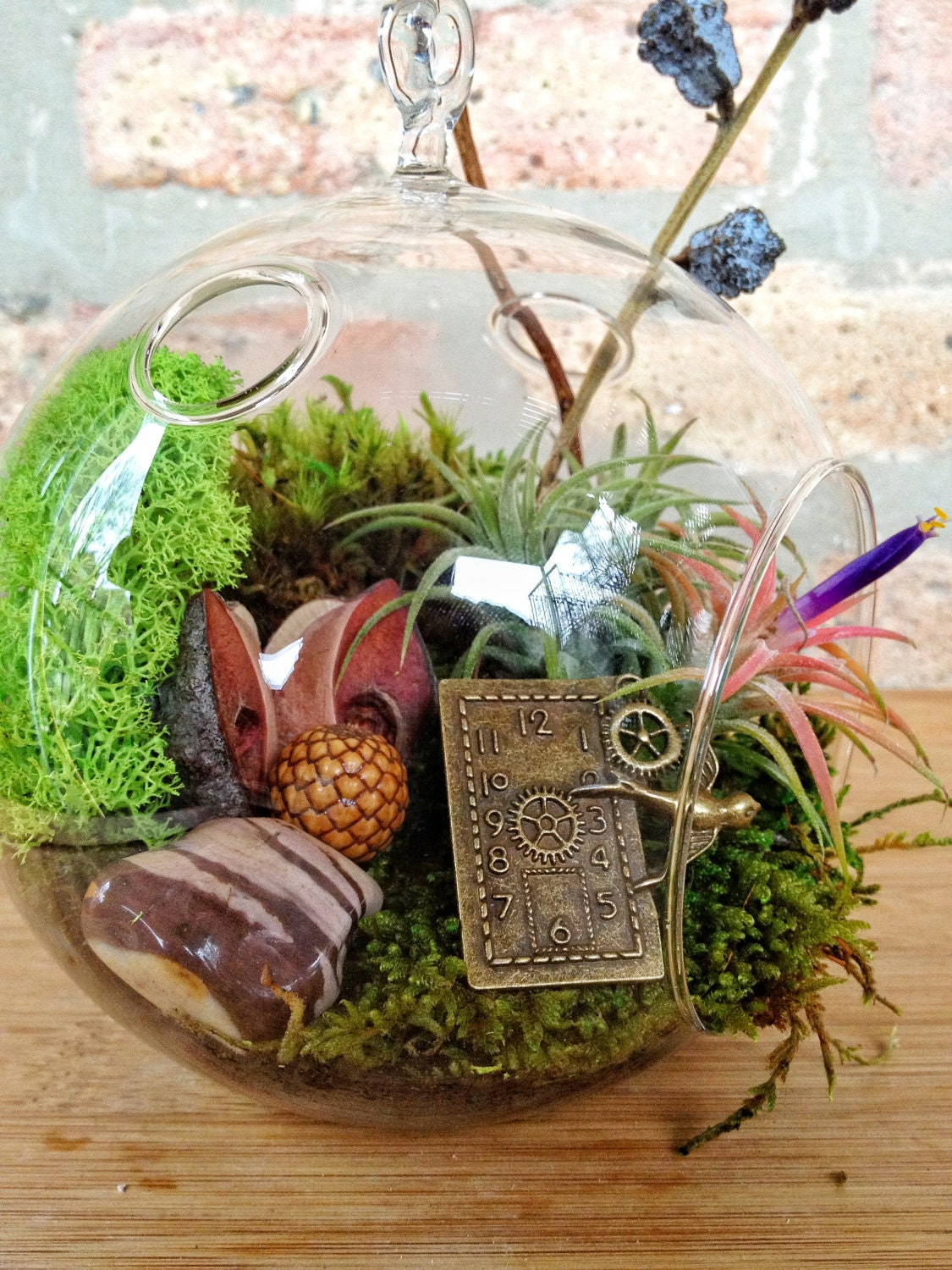 Steampunk Air Plant And Moss Terrarium Includes A Charm To Dangle  # Terrarium Dangle