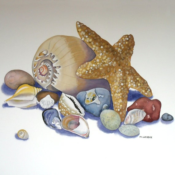 Seashell Starfish Original Still Life Beach Finds Watercolour Painting