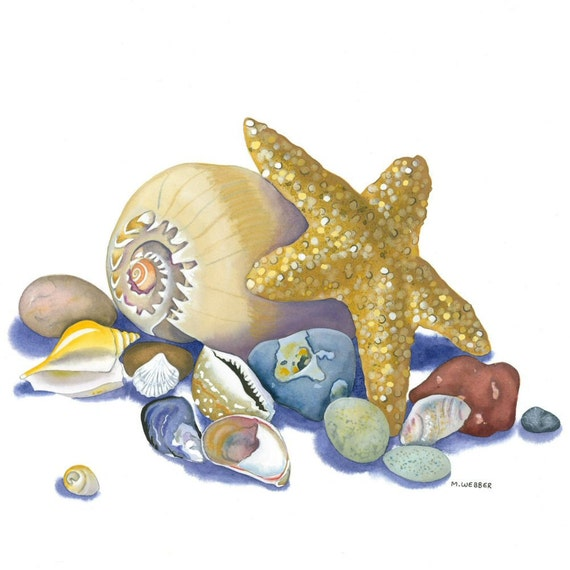 Seashell Starfish Pebbles Limited Edition Giclee Print Still Life