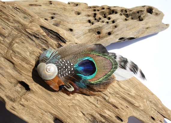 Natural Boho feather hair clip with a polished aged Shark's eye shell