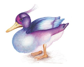 The Duck - Watercolour Pencil Drawing - 8 x 6 inch - Print