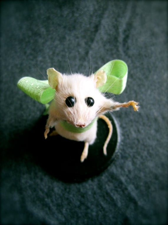 RESERVED Taxidermy Mouse:  Anthropomorphic