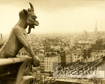 PARIS 1960 - a gargoyle watches the Eiffel Tower in this unusual view - vintage photograph