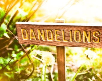 DANDELIONS Garden or Yard Sign, Painted & Oil Sealed Cedar Wood: Hand Routed, Plant Marker, Custom Garden Sign, Personalized Garden Marker