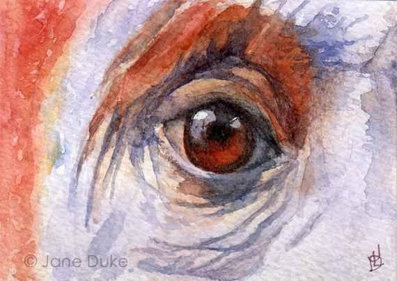 Orangutan Eye Watercolour ACEO Original Painting