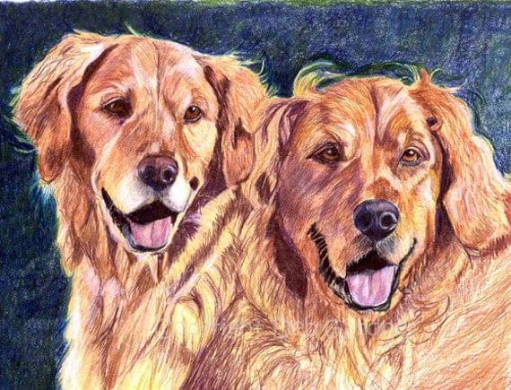 Golden Retriever Dog Art Signed Print