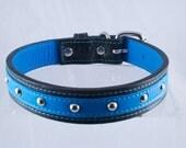 Leather Dog Collar Rock N' Roll Medium Blue ON SALE