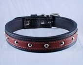Leather Dog Collar Rock N' Roll Medium Brown SALE