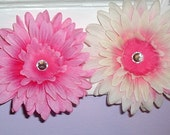 Two pink flower clips