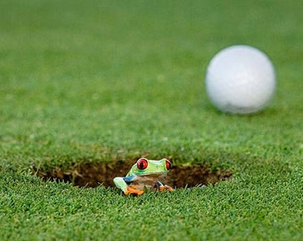 Golf Art, Real Frog Art, 8x10 Photo