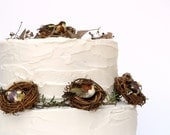 Birds Nest Cake Toppers for your Wedding Cake, Vine Nest Cake Decorations with Pretty LIttle Bird, Woodland, Rustic, Country, Spring