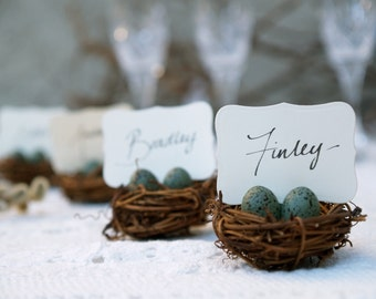 Nest Escort Cards, Wedding Decorations, Robin's Egg Place Cards, Table Setting, Wedding Favors, Baby Shower, Woodland Spring