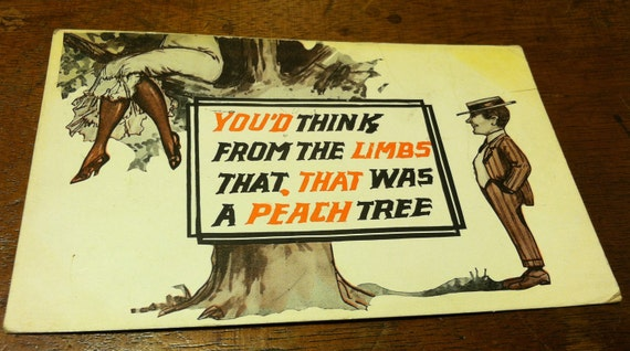 "S A L E 50% OFF Vintage 1914 comedy postcard ""You'd think from the limbs that that was a peach tree"""