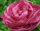 Flower hair- pink peony