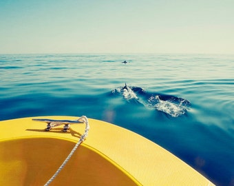 Ocean Photograph Dolphins Boat Sea, large wall photo, travel photography, beach house decor, blue, azure, yellow