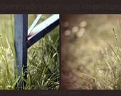Photoshop Action - Summer Breeze