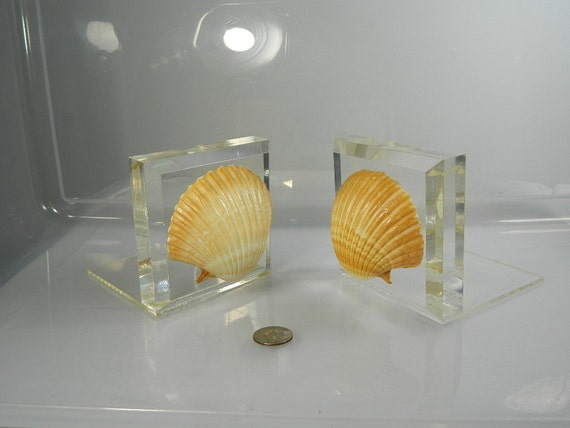 Vintage Bookends Lucite Clam Shell Bookends