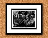 Black and White Art Print Snail Shell 8x10 on A4 Original Artwork No5. Modern NEW TRENDY UNIQUE Drawing Graphic Artprint