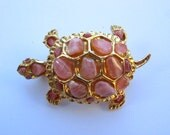 Swoboda Turtle Brooch with Coral Stones