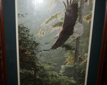 Eagle in Flight Print  Framed  Fathers Day, Thanksgiving, Black Friday, Cyber Monday, Christmas
