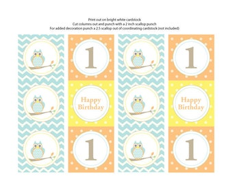 Owl Theme Cupcake Toppers/Tags