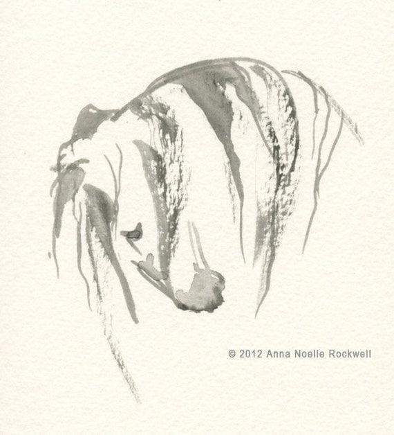 "Andalusian Horse Art, Original Watercolor Painting by Anna Noelle Rockwell, Framed- ""Andalusian Head I"""