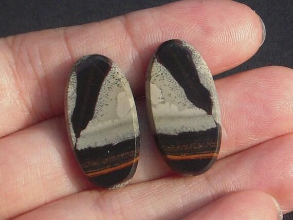 Chohua Jasper Earring Cabochon Pair