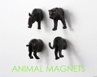 Jungle Safari Magnets - 4 piece set -  Jet Black Rhinoceros & Tiger