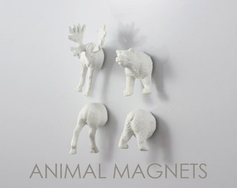 Arctic North American Moose & Bear  - 4 piece set -  Albino Crazy Magnets