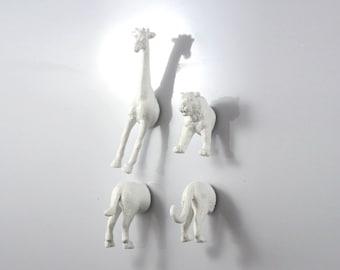 Albino Giraffe & Tiger - 4 piece set -  Albino weird Magnets - quirky gift ideas - geek gift - animal lover gift