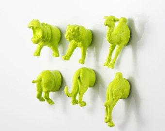 Apple Green MAGNETS: Safari Jungle Animal - Tiger - Hippo - Camel - 6 piece set -  Magnet set