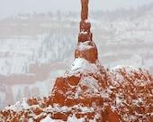 Utah Bryce Canyon  - Vintage Photograph  -  Fine Art Photography