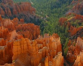 Utah - Bryce Canyon  - Vintage Photograph  - Fine Art Photography