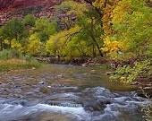 Zion National Park, Nevada   - Vintage Photograph