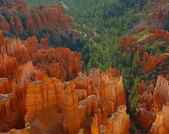 Utah - Bryce Canyon  - Vintage Photograph  - Fine Art Photography