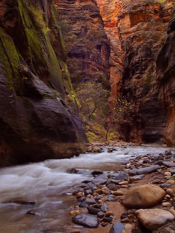 Zion Narrows, National Park, Nevada   - Cross Stitch Pattern from a Vintage Photograph  - Fine Art Photography