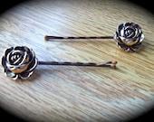 Gentle lady Hair pins