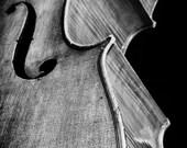 8 X 12 Black and White Fine Art Photography Print, Cello - NelsonRietzke