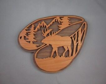 Moose In Hoof