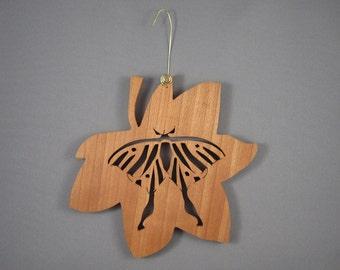 Moth  Sitting On A Leaf