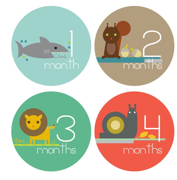 Monthly Baby Stickers - Bodysuit Stickers Month by Month - Zoo Animals 1-12