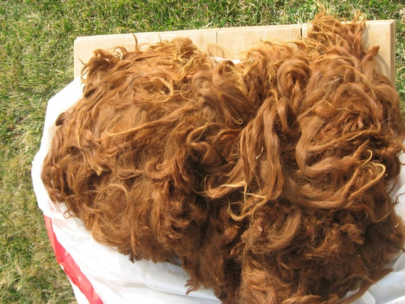 Alpaca Fiber, brown / red Suri, 6 ounces
