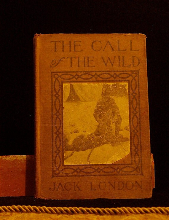 1910 / Illustrated / The Call of the Wild by Jack London