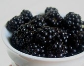 Blackberry Scented Soy 6 Cavity Tart Melt 2.5oz