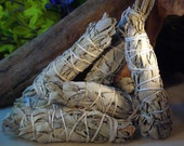 White Sage Smudge Stick for Cleansing, Recharging, and Purifing Your Home, Yourself, Crystals, & Your Gemstone Jewelry
