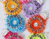 "Zebra Layered 4"" Daisy Rhinestone flower on crochet headband choose your colors"