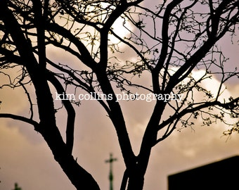 Tree and Crosses-Indianapolis, Indiana-Color-Travel Photography-multiple Sizes Available-Silhouette-Clouds-Nature-Fine Art Photography